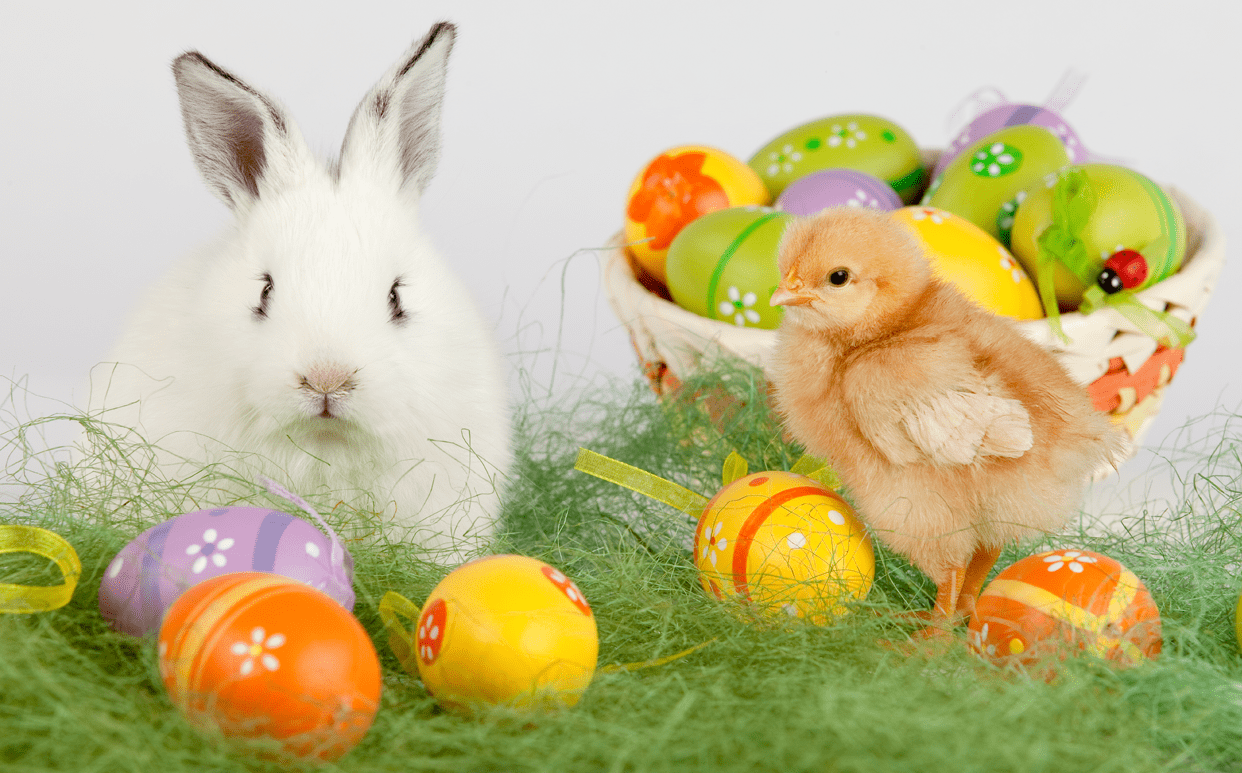 Ancient Origins of Easter